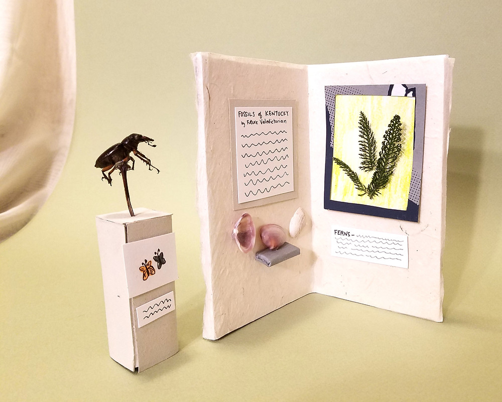 """A miniature facsimile of a freestanding L-shaped museum exhibit.  The exhibit has a textured beige background. On the right is a framed image of ferns with squiggle """"text"""" below it to indicate writing.  On the left is a poster that reads """"Fossils of Kentucky by a Future Valedictorian.  Below the poser are shells that are mounted on the wall as well as on a shelf.  To the left of the exhibit piece is a freestanding pedestal with a real beetle mounted on top. Below the beetle is a picture of two butterflies with squiggles to indicate text."""