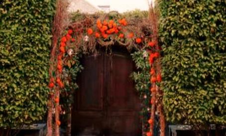 Samhain Gateway