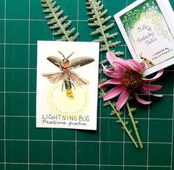 LightningBug
