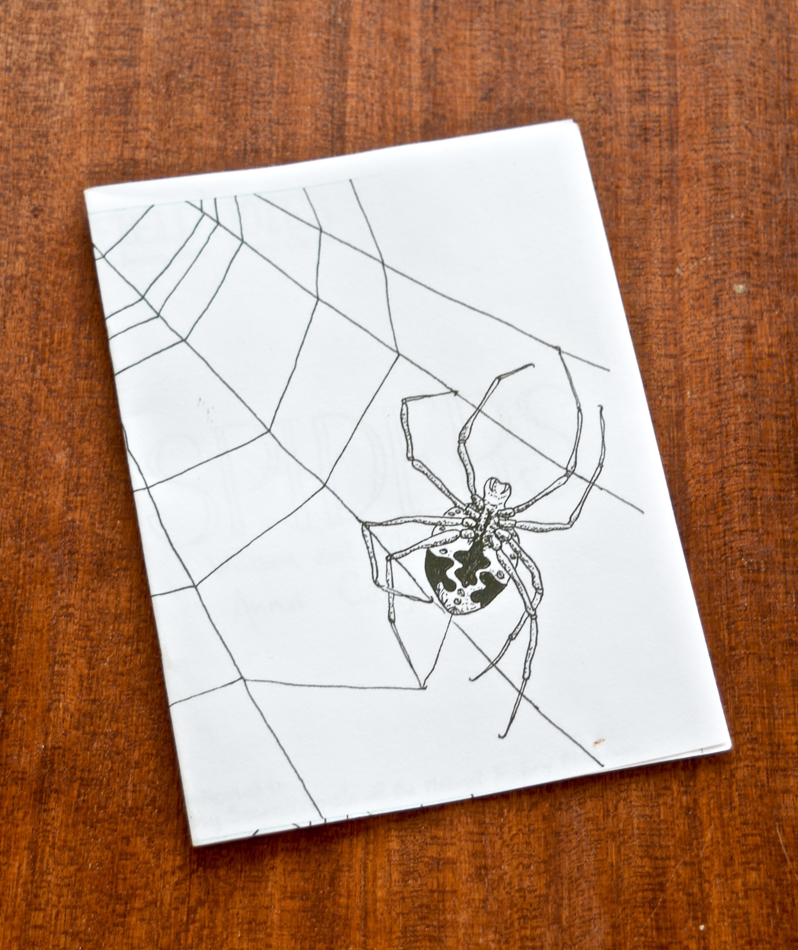Spider Zine