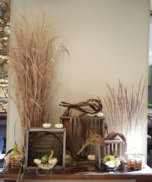 Botanical Display with Grasses