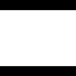 palazzett (1).png