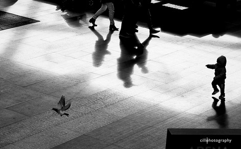 Project Normalness by documentary photographer Cilla Rijnbeek: a silhouette of a small child who chases a dove in the indoor Arena Mall in Den Bosch.