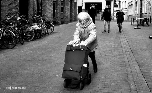 Project Normalness by Documentary Photographer Cilla Rijnbeek: old woman pushing a grocery bag filled with little white bears in the centre of Antwerpen.