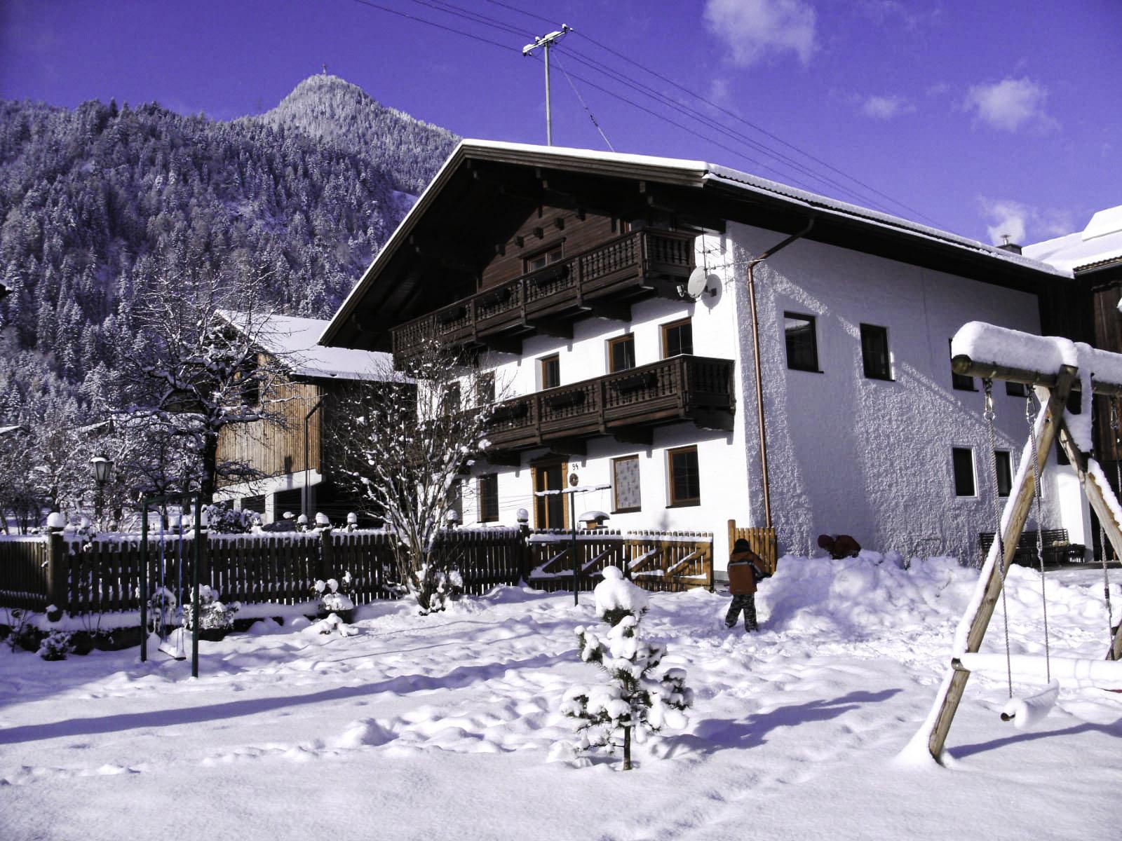 Winter im Garten2