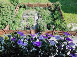 Blick_vom_Balkon_in_den_Gemüsegarten
