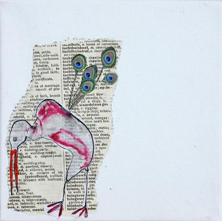 Rare vogels: 2