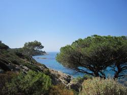 Sortie naturaliste Cap Lardier