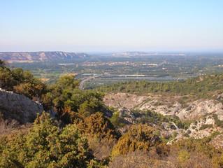 """Rendez-vous demain 9h30 pour une flânerie """"La Nature en Ville""""  à Salon-de-Provence !"""