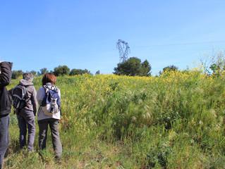 Flânerie Faune et Flore sur le massif Talagard