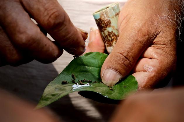 Indian Local Treats