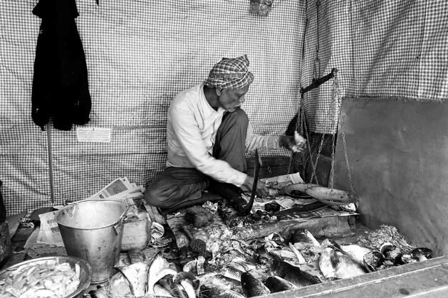 India Fish Market