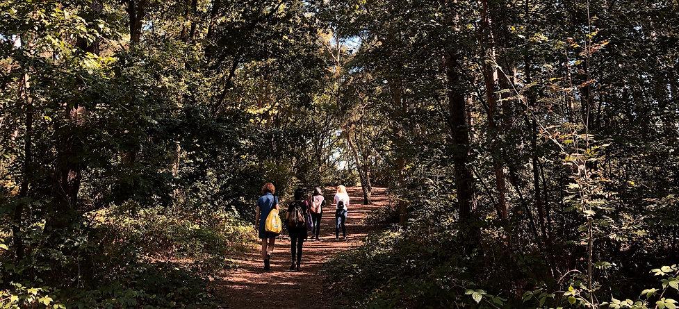 Woodland Walking Workshop Silly Heart Ev