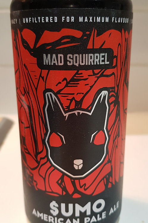 Mad Squirrel, Sumo