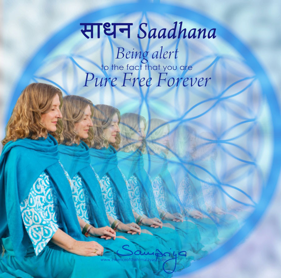 Sampriya's meditation quotes: Saadhana - being alert to the fact that you are Pure Free Forever