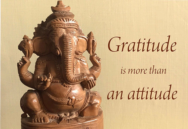 Online Meditation Training/Meditation Quotes: Gratitude is more than an attitude