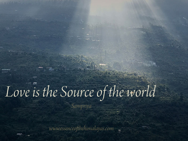 Online Meditation Training/Meditation Quote: Love is the Source of the world