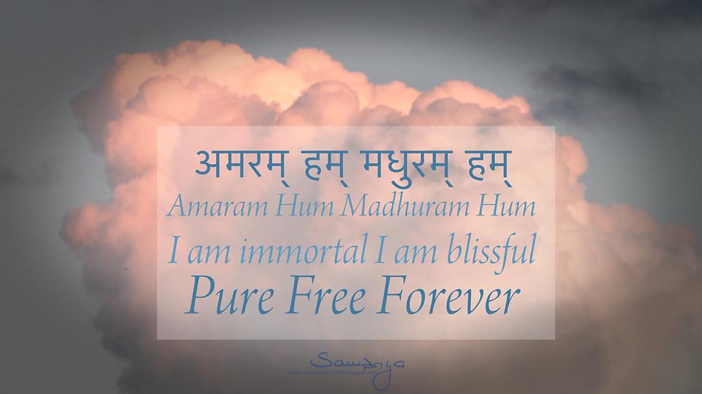 Sampriya's Meditation Quotes: Amaram Hum Madhuram Hum - Pure Free Forever