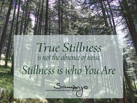 True Stillness is not the absence of noise...