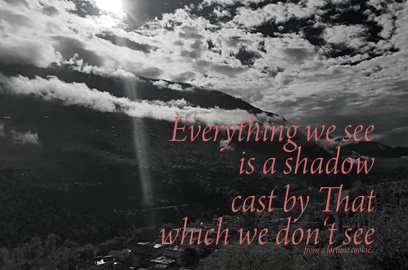 Online Meditation Training/Meditation Quote:Everything we see is a shadow cast by That which we don't see