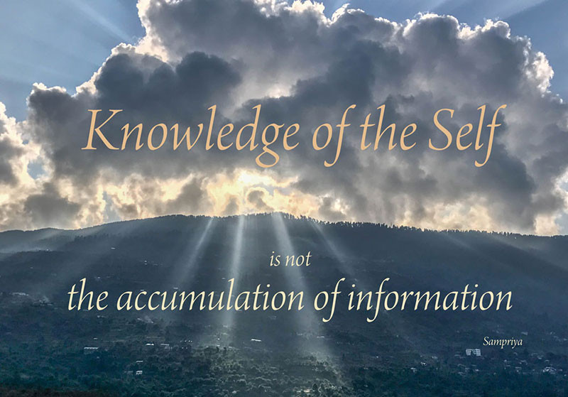 Online Meditation Teacher Training/Meditation Quote: Knowledge of the Self is not the accumulation of information