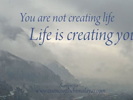 Life is creating you.....