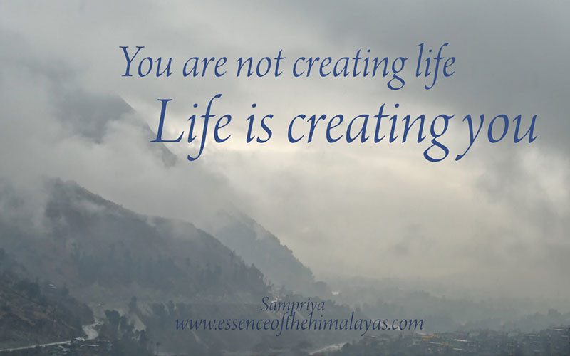 Online Meditation Training/Meditation Quote: Your not creating life, Life is creating you