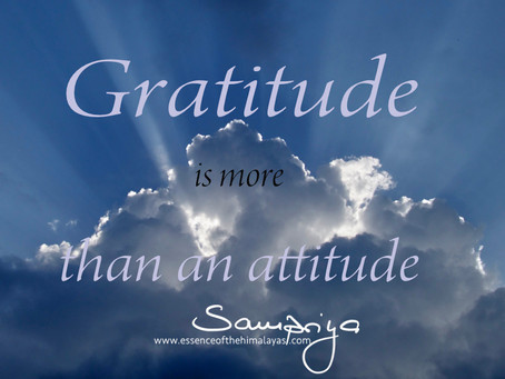 Gratitude is more than an attitude