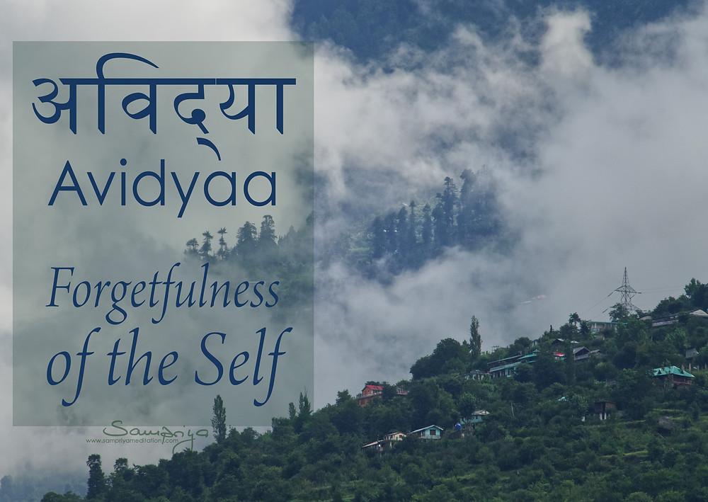 Meditation is the antidote to Avidyaa - forgetfulness of the Self