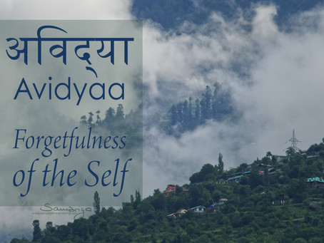 Meditation is the antidote to Avidyaa - Forgetfulness of the Self
