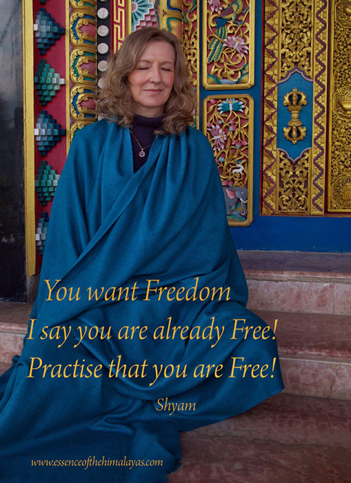 Online Meditation Training/Meditation quote: You are already Free-Meditation is how you know it