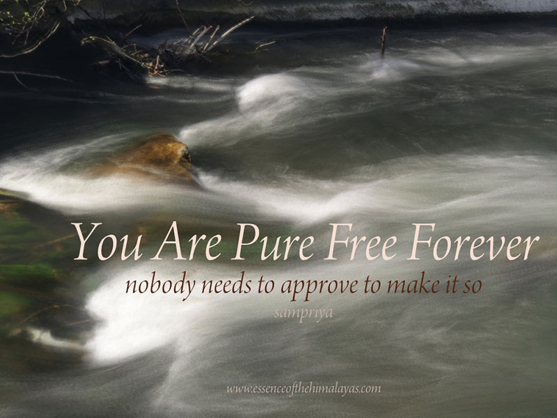 Online Meditation Training with Sampriya   Meditation Quotes: Your are Pure Free Forever - nobody needs to approve to make it so
