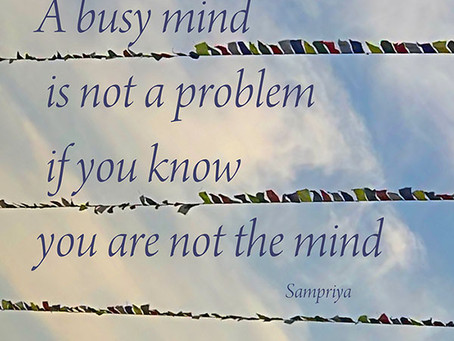 In Meditation and in life, a busy mind is not a problem...