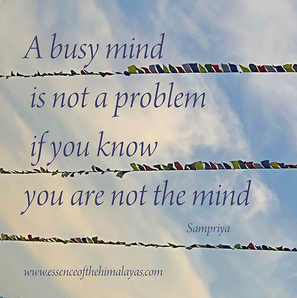 Online Meditation Training/Meditation Quote: A busy mind is not a problem if you know you are not the mind
