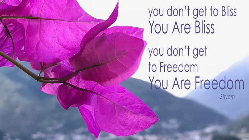 Online Meditation Training/Meditation Quote: You don't get to Bliss, You Are Bliss