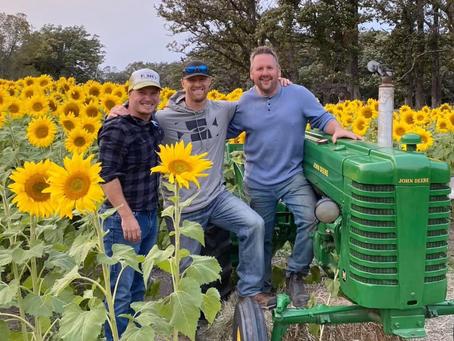 Looking back on sunflower fields of hope