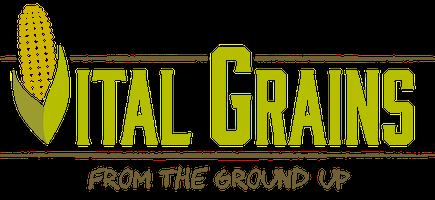 We Are Vital Grains