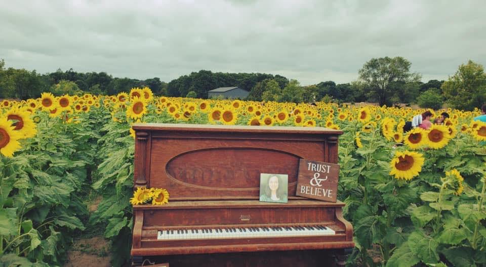 Sunflower Fields of Hope