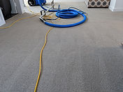Steam Shampoo Cleaning theSydneycleaners