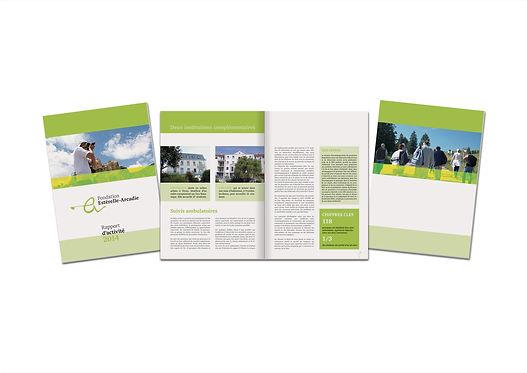 Fondation Estérelle Arcadie, Rapport d'activité 2014