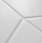 Vector and Form Close Up (2).png