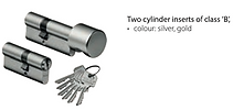 Two cylinder inserts .png