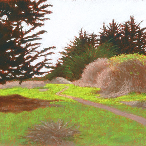 Lighthouse Field Path