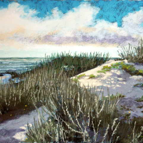 Asilomar Dunes 3