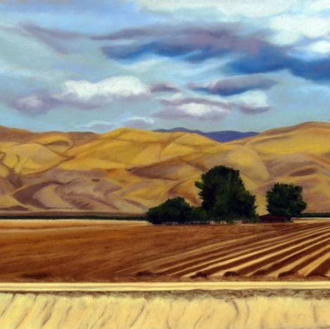 Farm on the Maricopa Highway