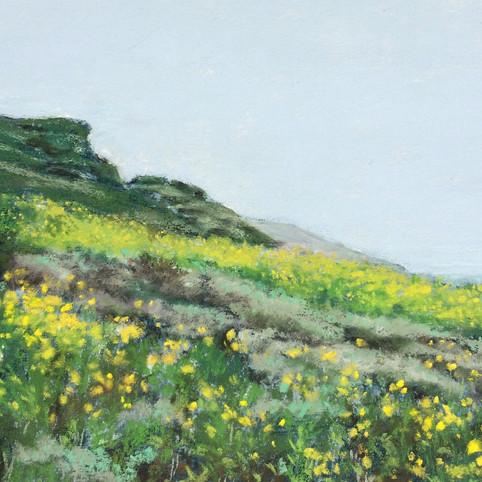 Yellow Coast, Big Sur