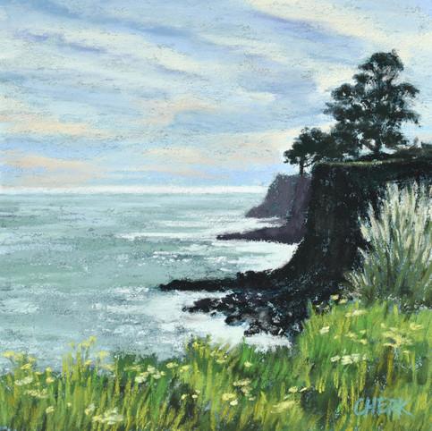 Capitola Cliffs 3