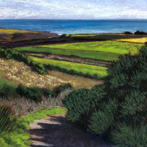 North Coast Fields