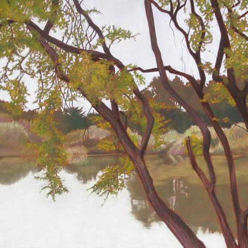 Antonelli's Pond