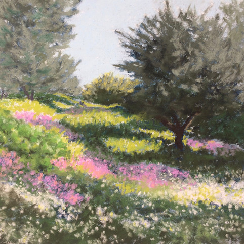 Flowers in the Olives